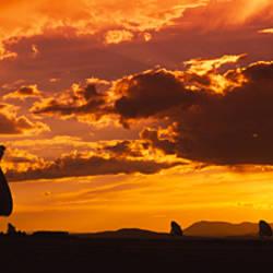 Silhouette of Array Radio Telescopes, National Radio Astronomy Observatory, New Mexico, USA