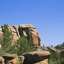 Rock formations in the forest, Vedauwoo Rocks, Medicine Bow National Forest, Wyoming, USA