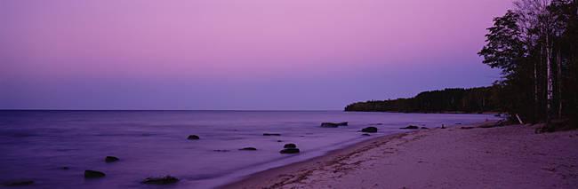 Trees on a beach, Union Bay, Lake Superior, Upper Peninsula, Silver City, Michigan, USA