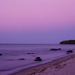 Trees on a beach, Union Bay, Lake Superior, Upper Peninsula, Silver City, Michigan, USA