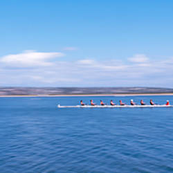 Side profile of a crew rowing on a lake