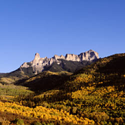 USA, Colorado, Uncompahgre National Forest, Panoramic view of a landscape