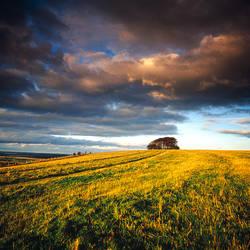 Storm Clouds Field Dorset England