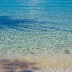 Shadow of trees on water, Hawksnest Bay, Virgin Islands National Park, St. John, US Virgin Islands