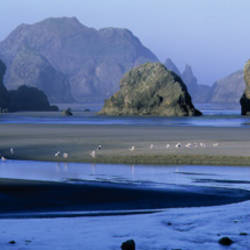 Sea Stacks, Myers Creek Oregon, USA