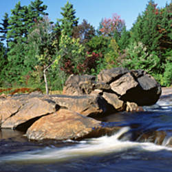 USA, New York, Adirondack State Park, Moose River, River flowing through the forest