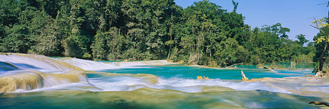 Water flowing in the forest, Agua Azul, Chiapas, Mexico