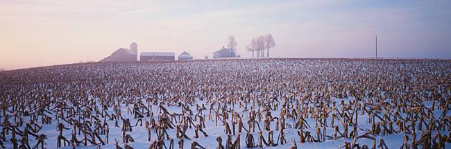 USA, Illinois, farm, winter