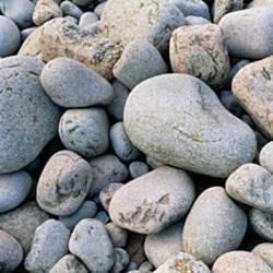 Beach Rocks Acadia National Park ME USA
