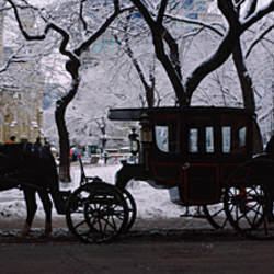 Silhouette of horse drawn carriages, Chicago, Illinois, USA