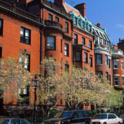 Buildings in a street, Commonwealth Avenue, Boston, Suffolk County, Massachusetts, USA