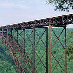 USA, West Virginia, Route 19, Trees around New River Gorge Bridge