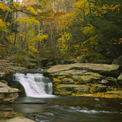 Waterfall in the forest, Kaaterskill Falls, Catskill Mountains, New York State, USA