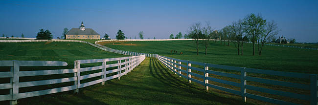 Fences around ranches, Lexington, Kentucky, USA