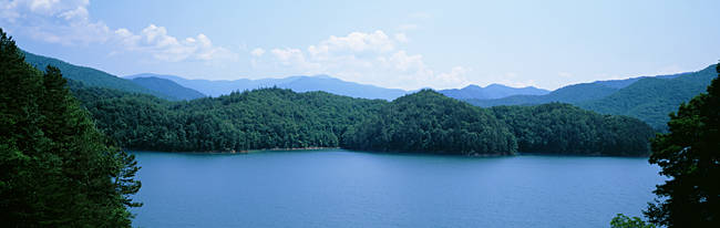 Trees surrounding a lake, Fontana Lake, North Carolina, USA