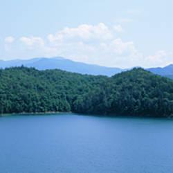Trees surrounding a lake, Fontana Lake, North Carolina, USA
