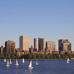 Sailboats in the sea with skyscrapers in the background, Back Bay, Boston, Massachusetts, USA