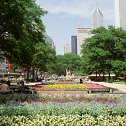 Park in front of buildings, Grant Park, Chicago, Illinois, USA