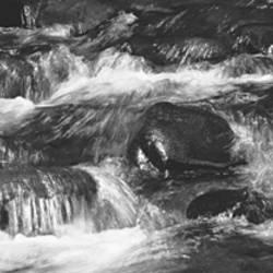 USA, North Carolina, Great Smoky Mountains National Park, High angle view of a rapid stream