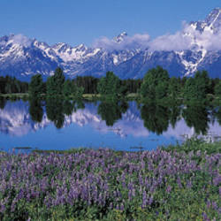 USA, Wyoming, Grand Teton Park