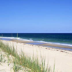 Cape Hattera National Park, Outer Banks, North Carolina USA
