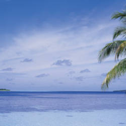 Ocean, Island, Water, Palm Trees, Maldives