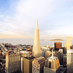High angle view of a city, Transamerica Building, San Francisco, California, USA