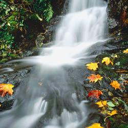 Cascading Falls England
