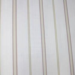 Thin Stripe  Beige, Purple