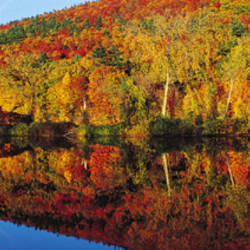 Connecticut River, Brattleboro, Vermont, USA