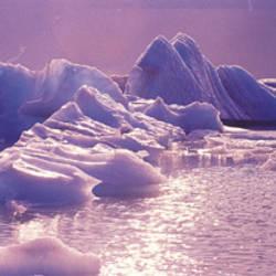 USA, Alaska, Portage Lake, icebergs