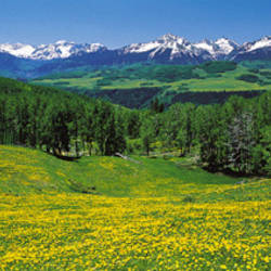 San Miguel Mountains In Spring, Colorado, USA