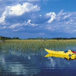 Kayaker In Everglades National Park, Florida, USA
