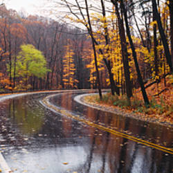 Rainy Road In Autumn, Euclid Creek, Parkway, Ohio, USA