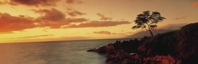 USA, Hawaii, Maui, Wailea Point