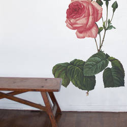 Rose - Vintage Wall Decal