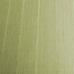 Light brownish green subtle stripes semi-reflective: Mx2350