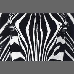 Black & White Giant Art