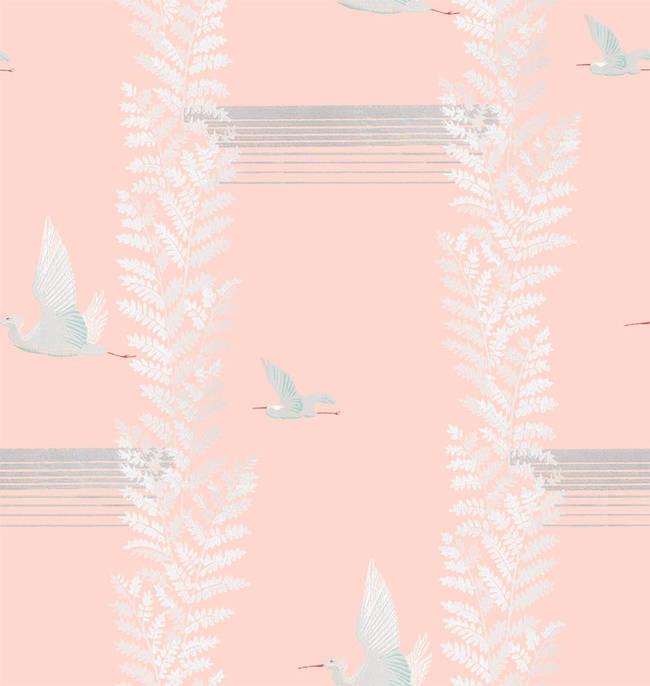 Silk Skies