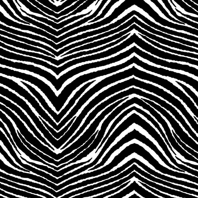 Sweet Zebra