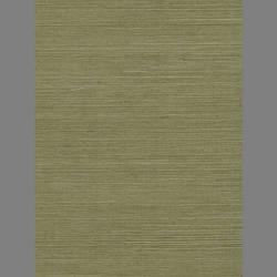 Olive Green Grasscloth