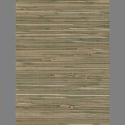 Beige and Brown Grasscloth handmade natural fiber wallcovering: Be1533g