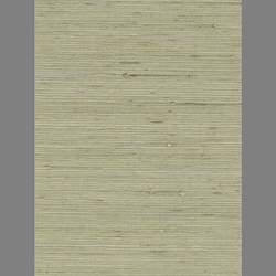 Green Grasscloth natural fiber handmade wallpaper: Ge3276g