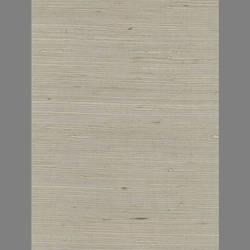 Grey Silver Grasscloth