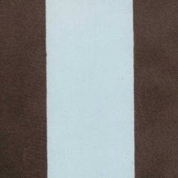 Brown Velvet Stripes on Light Blue