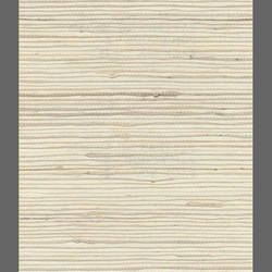 Grasscloth wallpaper: MSNN576