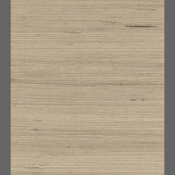 Grasscloth wallpaper: MSNN587