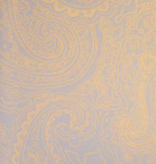 Paisley screen printed wallpaper: VCC0608