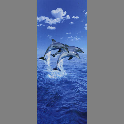Three Dolphins Door mural wallpaper, 1 part: 599