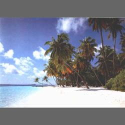 Seychellan Island
